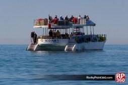 ecofun-4915-630x420 Spring Break, on! Rocky Point Weekend Rundown!