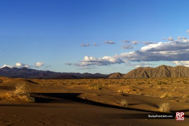 pinacate-44