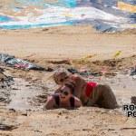 Mud_Run_-2 Dirty Beach Mud Run