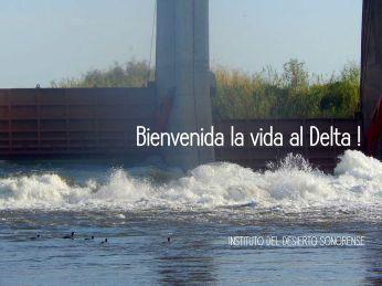 colorado-river-monica-bienvenida