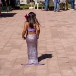MermaidsMarket-88-de-122 Pirates & Mermaid Extravaganza