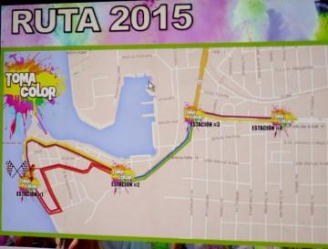 toma color-2015 (3)