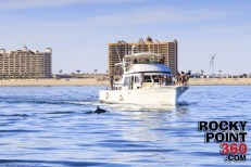 About-time-charters-630x420 Jazz it up!  Rocky Point Weekend Rundown!