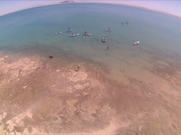 SUP-abril2 SUPing the Sea of Cortez!