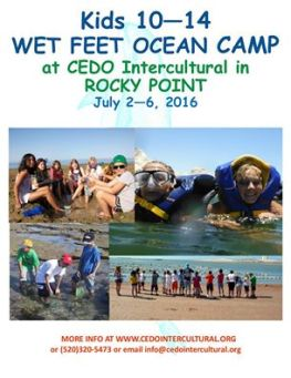 cedo-wet-feet-camp Get your Feet Wet! CEDO Summer Camp  July 2nd-6th