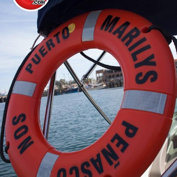 DelMarCharters-1 Don't wear a dress on a speed boat: Venture to Bird Island (Part III)