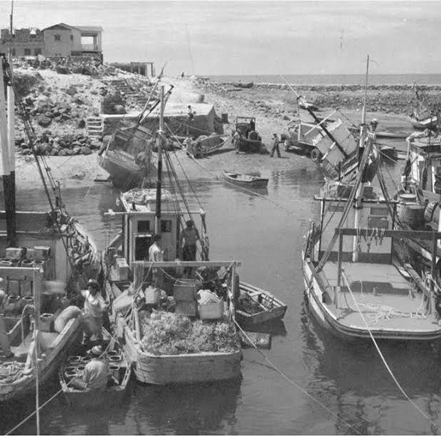 peñasco-90-años-6 End of Shrimp Season. Peñasco plans for 90th. RockyPoint360 NewsWrap
