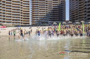 Triathlon 2017 4