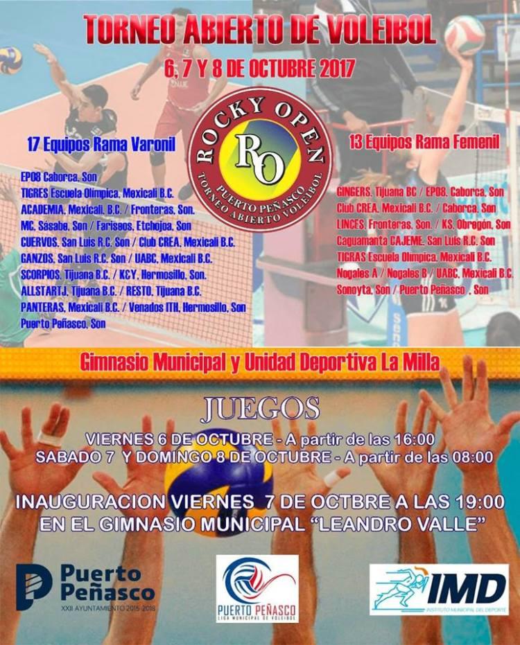 cartel-voleibol TORNEO DE VOLEIBOL 2017
