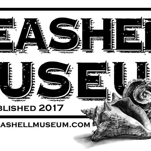 seashell-museum-2018 Whenever it rains... Rocky Point Weekend Rundown!