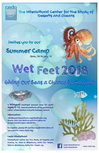 cedo-wet-feet-camp-2018 Child's Play! Rocky Point Weekend Rundown!