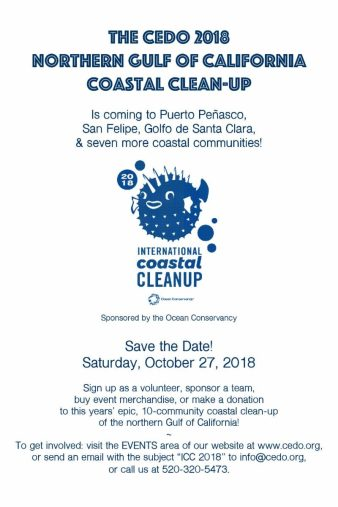 cedo-clean-up-oct-27-800x1200 Stay cool! Rocky Point Weekend Rundown!