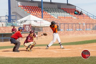 BASEBALL-JAM-2019-61 Baseball Slam at January Jam 2019