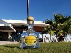 Mexican-Moonshine-tequila-classic-2019-13 Mexican Moonshine Tequila Classic 2019