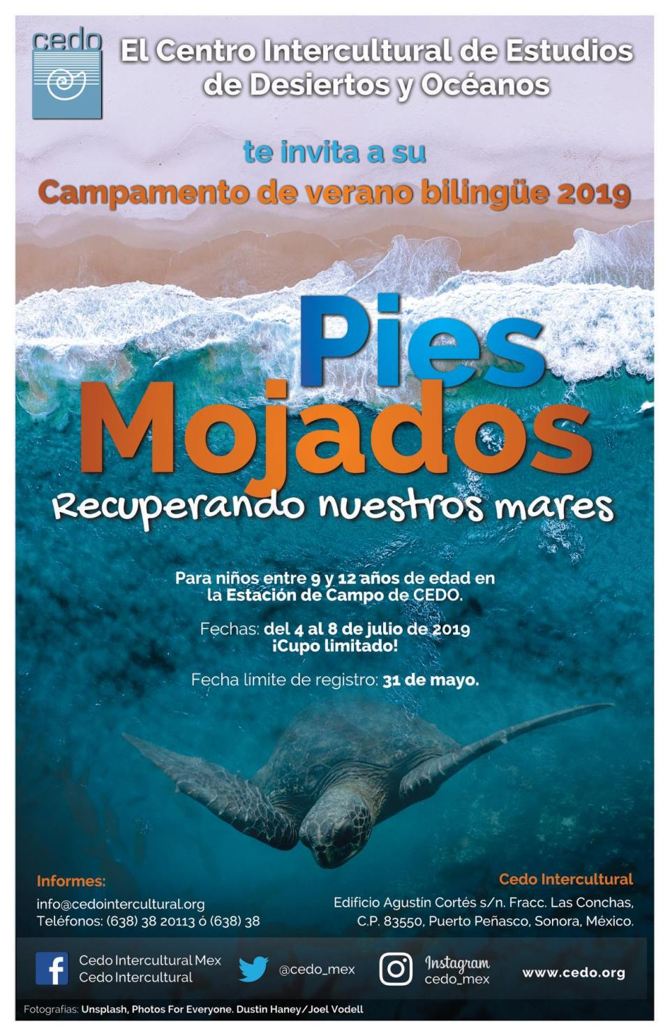 Pies Mojados Bi-Lingual Summer Camp Registration. By CEDO @ CEDO