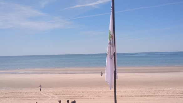 clean-beach-flag2 Peñasco's sustainable clean beach recertification