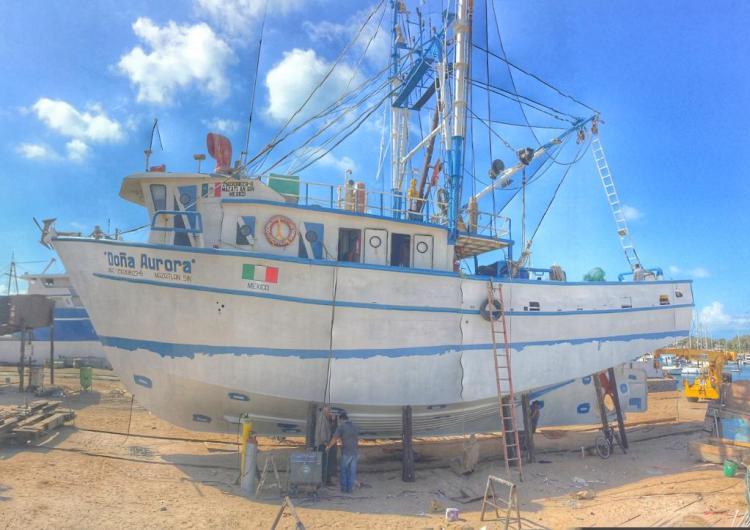 2019-photo-Robespierre-Islas 2019 Shrimp Season soon to get underway