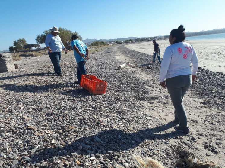 limpieza-oct-2019-pto-lobos 2019 International Coastal Clean-up in Puerto Peñasco surpasses goals