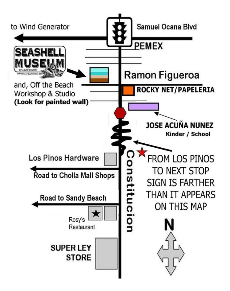 seashell-map-2019 SeaShell Museum reopens Oct. 4th!