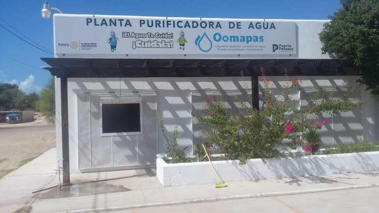 "planta-al-publico-aportacion-1200x675 2020 ""Fish Bowl"" surpassed expectations"