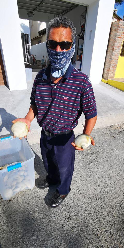 ernesto-clams Local fishermen and the economic impact of Covid-19