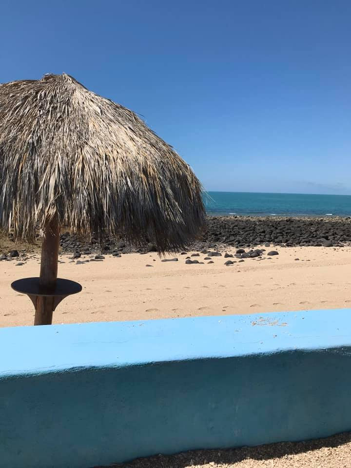 melody-scott-mannys-june-7 Puerto Peñasco hopes to welcome back visitors June 16th