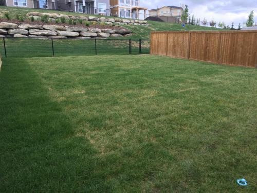 Sod & Fence Construction