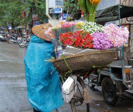 Hanoi Divers (17)