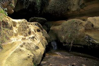 Hell's Gate national Park (61)