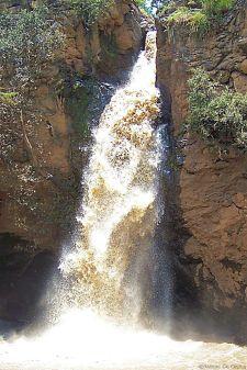 Lake Nakuru National Park (111)