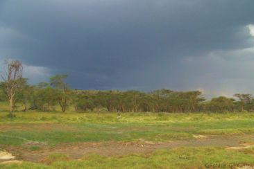 Lake Nakuru National Park (169)