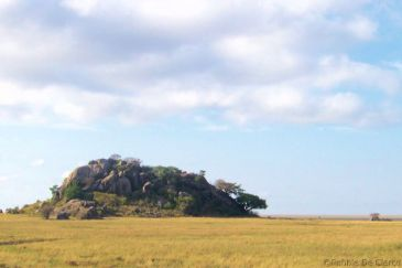 Serengeti National Park (245)