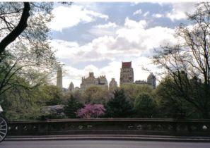 Central Park 27