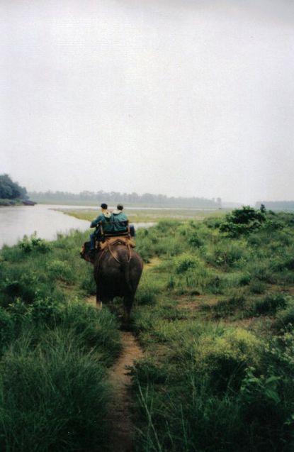 Chitwan 07