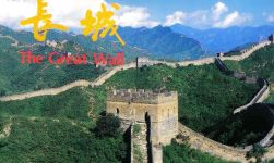 Grote Muur 11