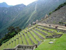 Macchu Picchu 40