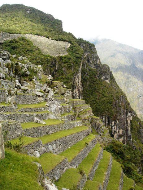 Macchu Picchu 51
