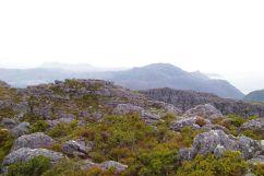 Tafelberg 18