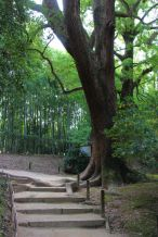 kurakuen-garden-78