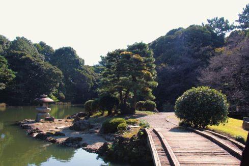 shinjuku-gyoen-garden-50