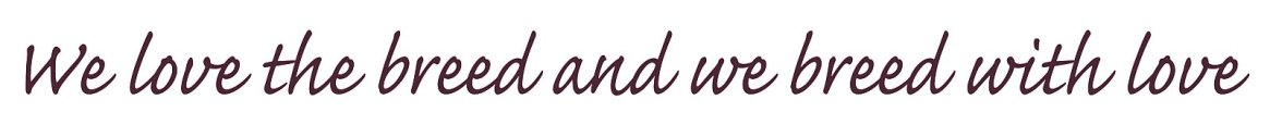 love-the-breed_slogan