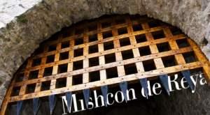 mishcon-de-reya