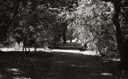 2009-08-14st-andrews018