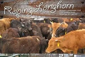 Roping Longhorn