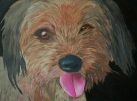 """""""Chubbs"""" 2013 - Oil on Canvas"""