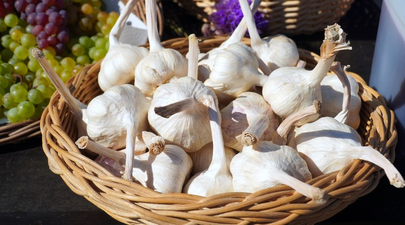 Garlic Basket Basket Of Garlic  - matthiasboeckel / Pixabay