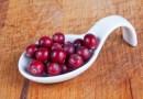 Cranberry Berries Harvest  - Waldrebell / Pixabay