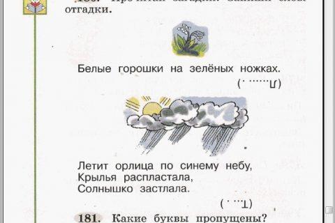 Русский язык. 1 класс (страница 3)