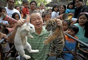 Goodbye Tiger Hello Rabbit