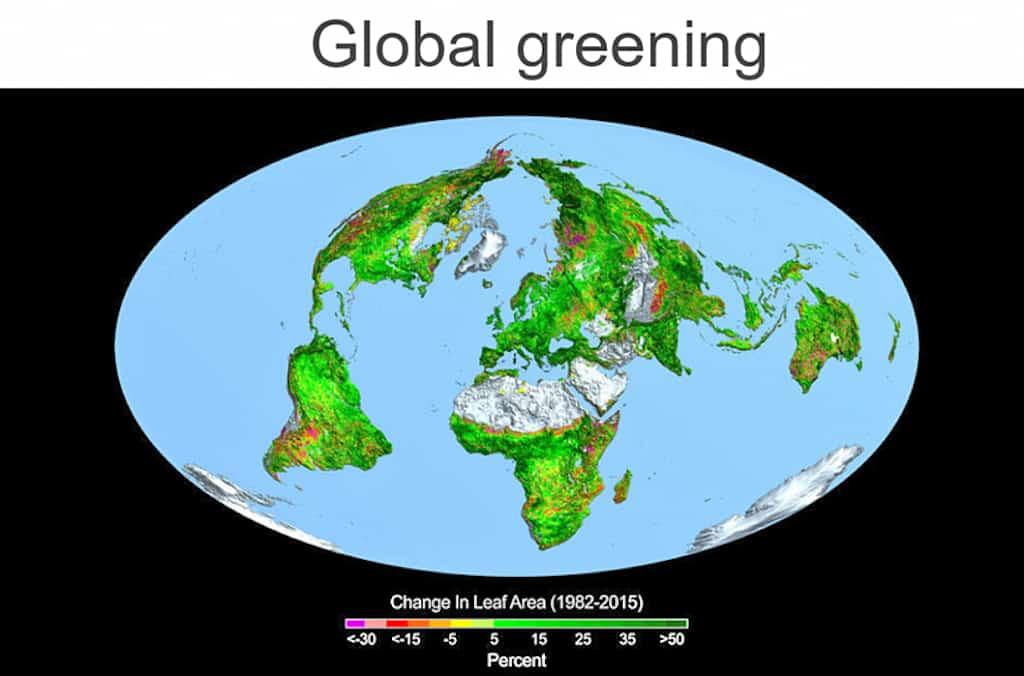 global-greening-copy